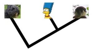 Bouvier family tree