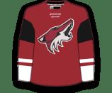 Dane Birks's Jersey