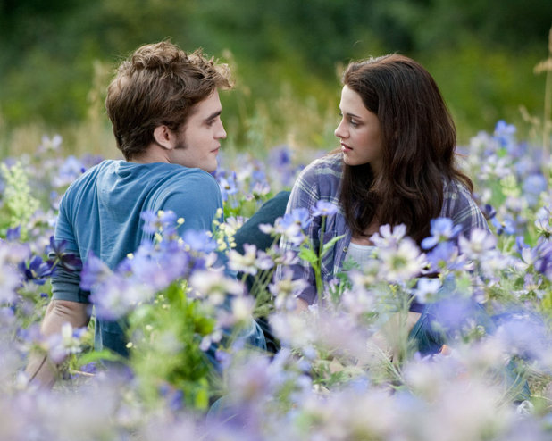 "The Movie ""Twilight"" Inspires Me to Do A Better Job with Some of My Resolutions."