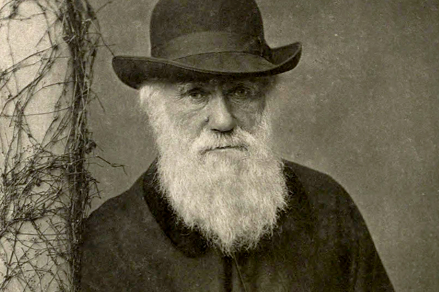 """A Happiness Reminder from Charles Darwin: """"I Have Worked as Well as I Could."""""""
