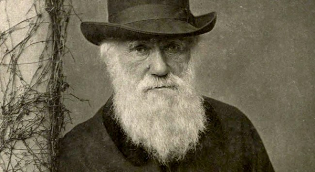 "A Happiness Reminder from Charles Darwin: ""I Have Worked as Well as I Could."""