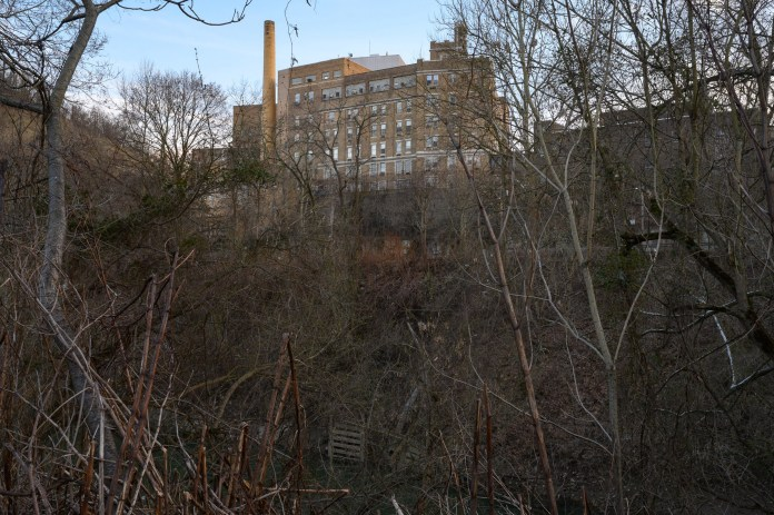 A view of the Ohio Valley Medical Center that closed in 2019, seen from the former encampments along Wheeling Creek in March.