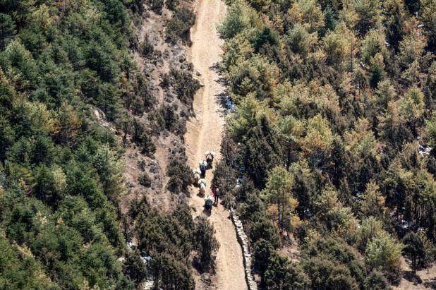 法新社珠穆朗玛峰地区政府在全国范围内实施封锁措施,以预防冠状病毒