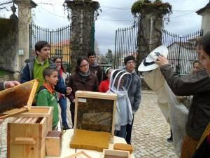 Crianças conhecem a apicultura com a associação