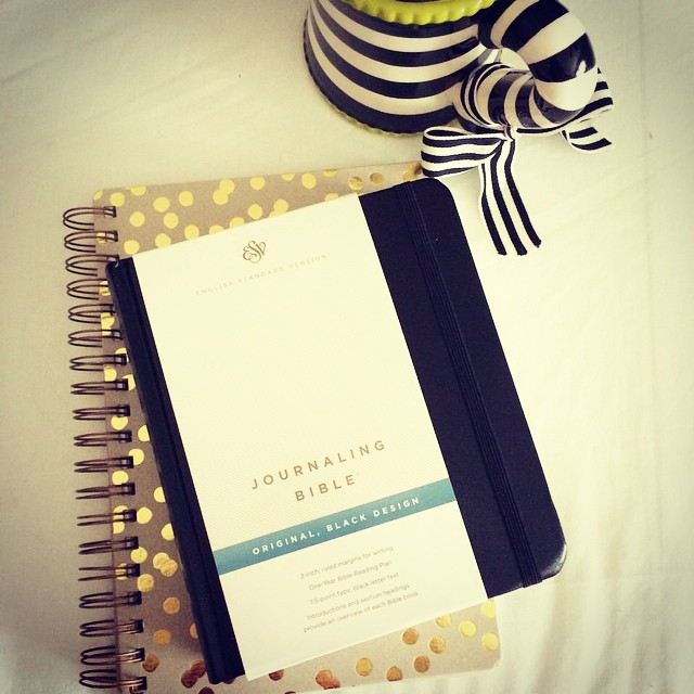 Journaling Bible | apileofashes.com
