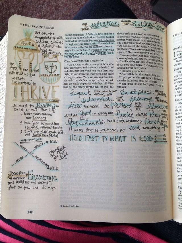 Journaling Bible | THRIVE  apileofashes.com