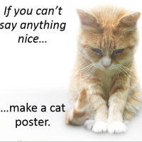 The Most Important Motivational Cat Poster Ever