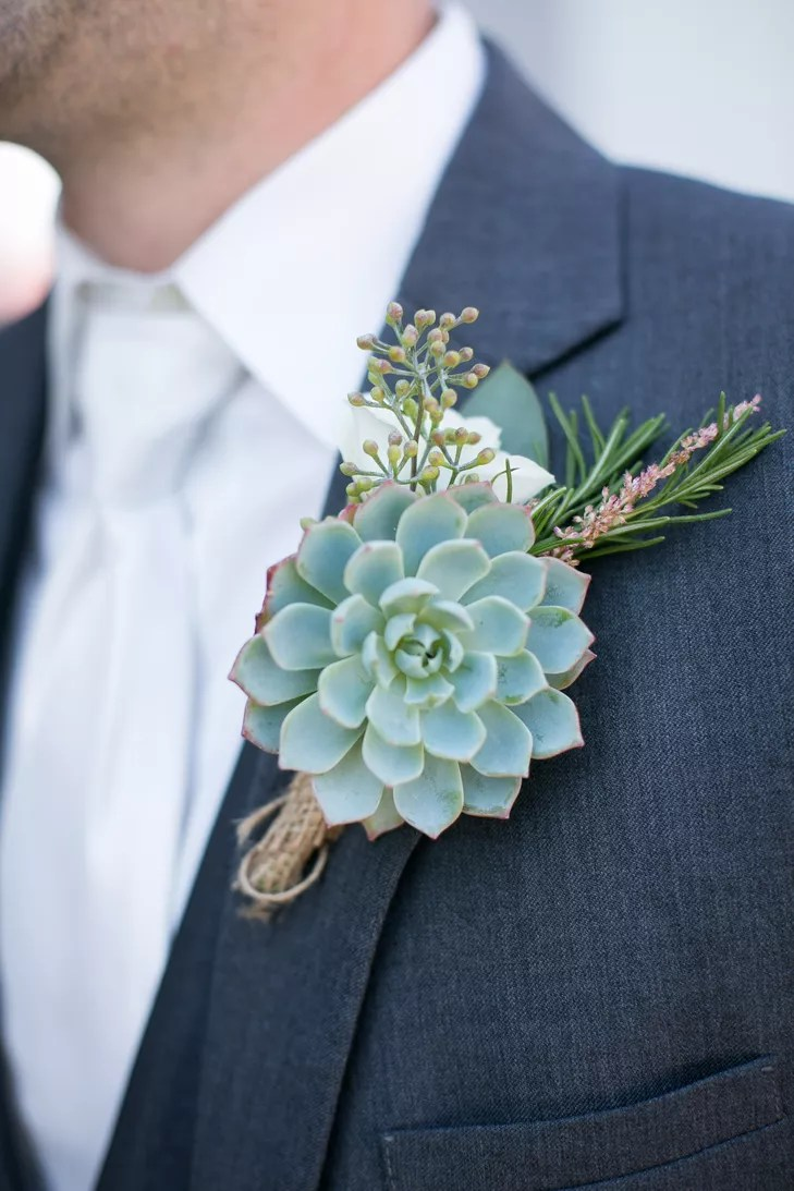 Rustic Simple Succulent And Seeded Eucalyptus Boutonniere