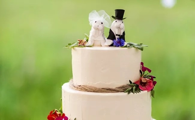 wedding cake topper  raquo  Animal Wedding Cake Toppers for Every Kind of Couple