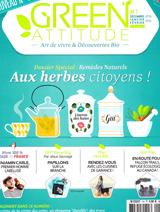 Green Attitude Apis Cera Bougies