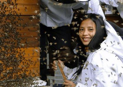 apicultrice aux Philippines