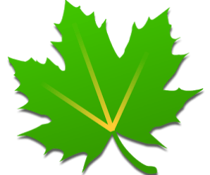 Greenify Donate 3.0 build 4 Cracked [Latest]