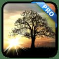 Sun Rise Pro Live Wallpaper v4.5.6 [Latest]