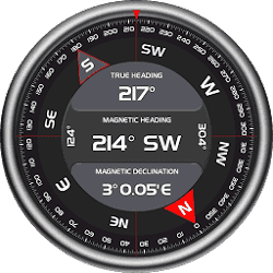 AndroiTS Compass Pro