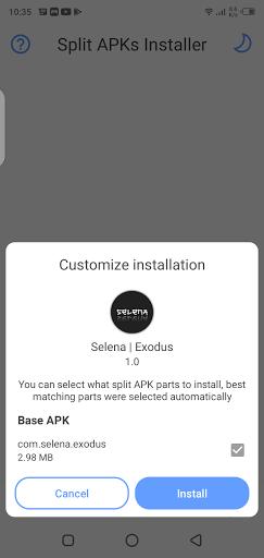 Screenshot of Selena Injector