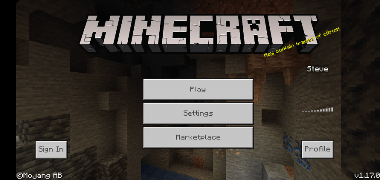 Screenshot of Jenny Minecraft Full