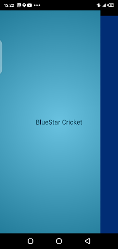 Screenshot of Blue Star Cricket Android