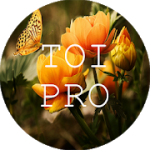 Text Over Image PRO Write Text On Photos Memes v1.1.7 APK Paid
