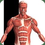 Visual Anatomy 2 v3.1 APK