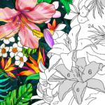 Ipaint Paint By Number Mods Apk Download