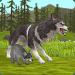 Free Download WildCraft: Animal Sim Online 3D 13.2_powervr APK