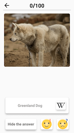 Dog Breeds – Quiz about all dogs of the world 1.98 screenshots 8