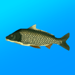 True Fishing Fishing simulator V 1.14.2.649 MOD APK + DATA