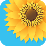 Gallery Photo Gallery & Video Gallery PRO V 2.8 APK Mod