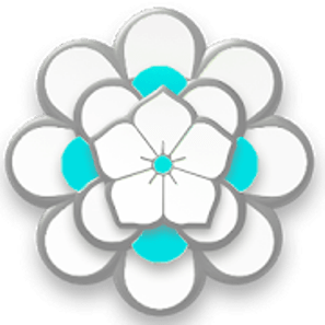 POLAR Icon Pack v3.51 [Patched] APK [Latest]
