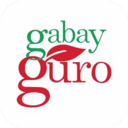 Gabay Guro App