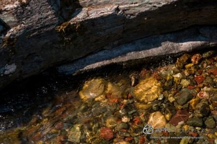 WM_GlacierNP_BaringCreek-8051