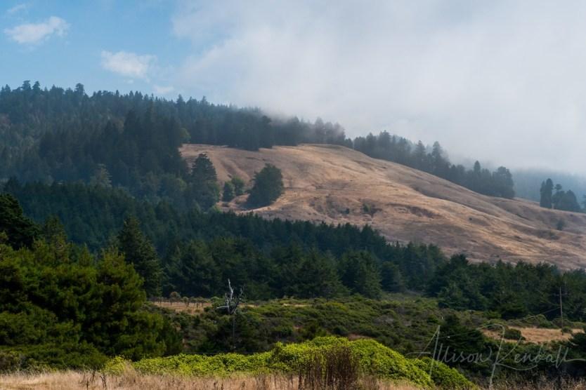 WM_FortRoss_California-7694