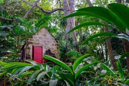 WM_StNicholasAbbey_Barbados-0285