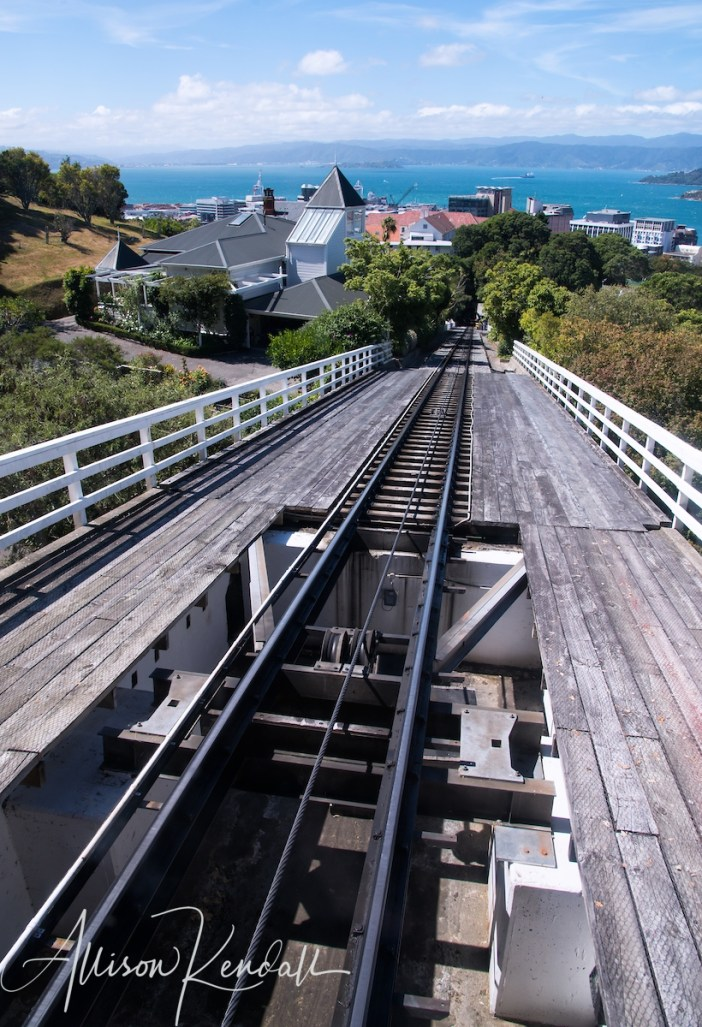 The funicular, a Wellington Cable Car, provides a scenic journey from the heart of downtown to the Wellington Botanic Garden