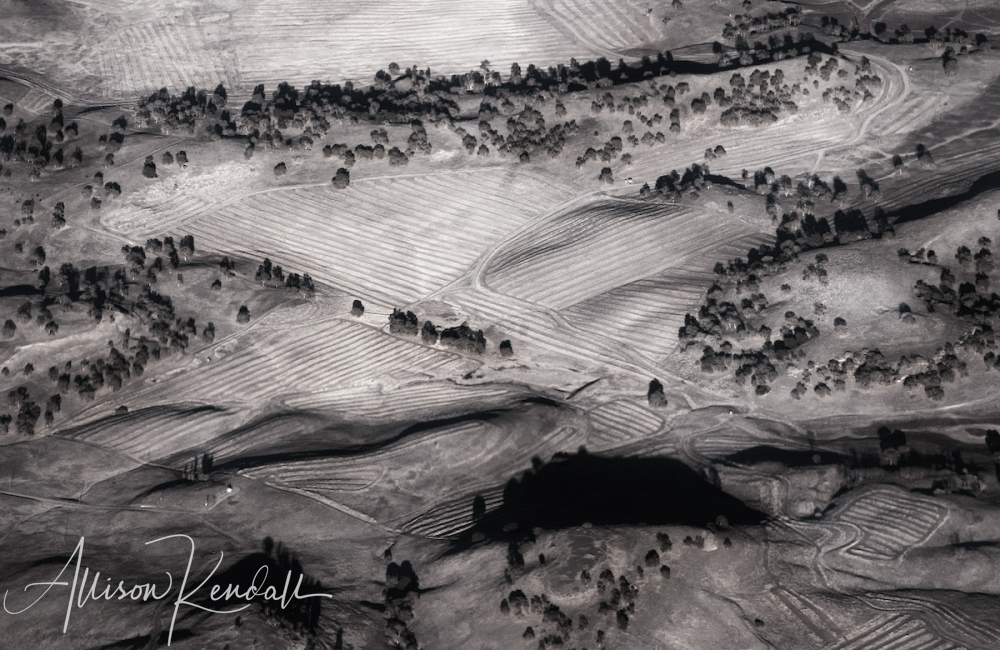WM_aerial_BW_agricultural_hills
