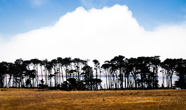 Summer Horizon | Big Sur, California