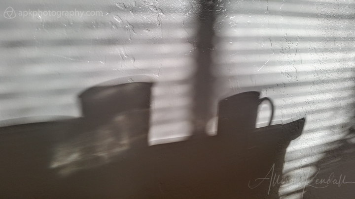 Winter light and shadowplay