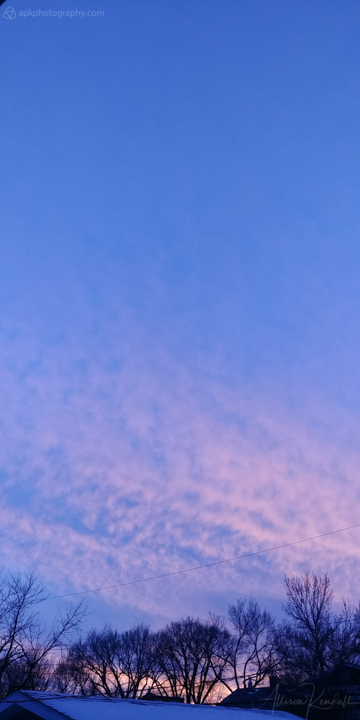 Pink winter sunset clouds