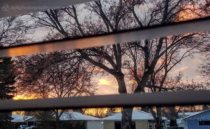 Sunset seen through a window, framed by snow and tree branches