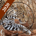 Download Forest Animal Wild Simulator 1.4 APK For Android