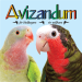 Download Avizandum 6.0.11 APK For Android