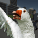 Download Goose City Rampage 1 APK For Android