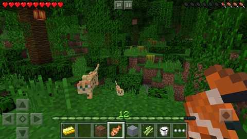 Minecraft: Pocket Edition 1