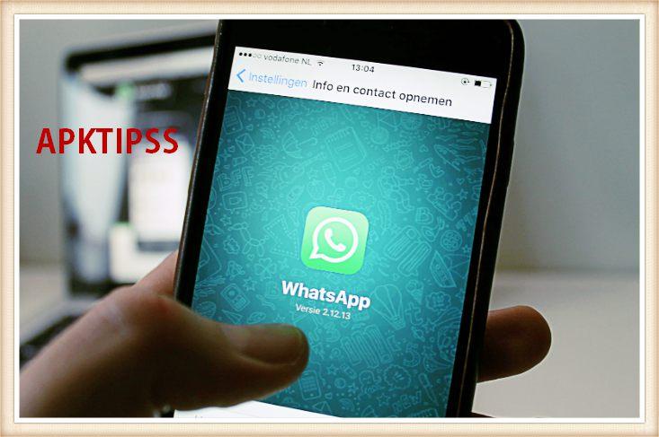 App whatsapp online stalker How to