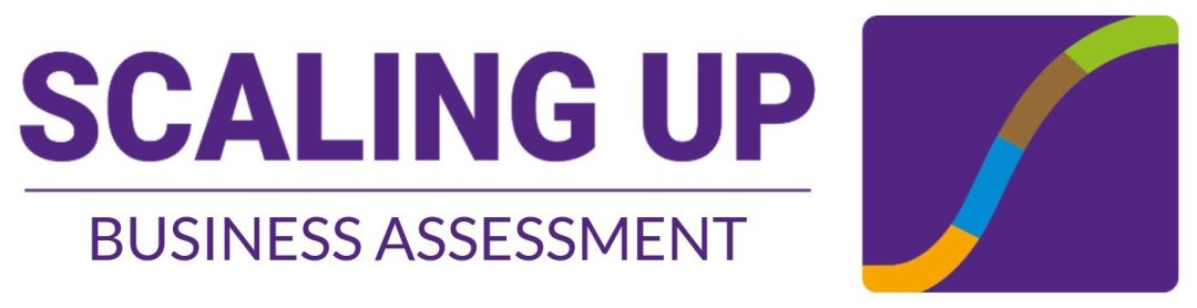 Scaling Up Business Assessment