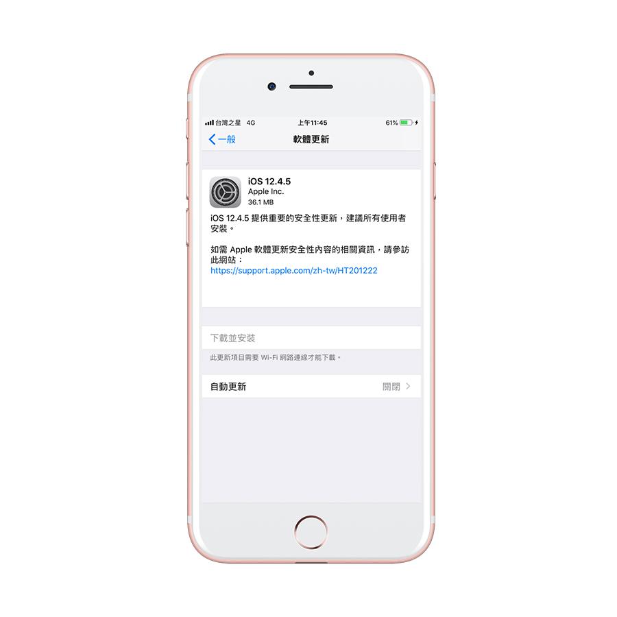 iOS 12.4.5