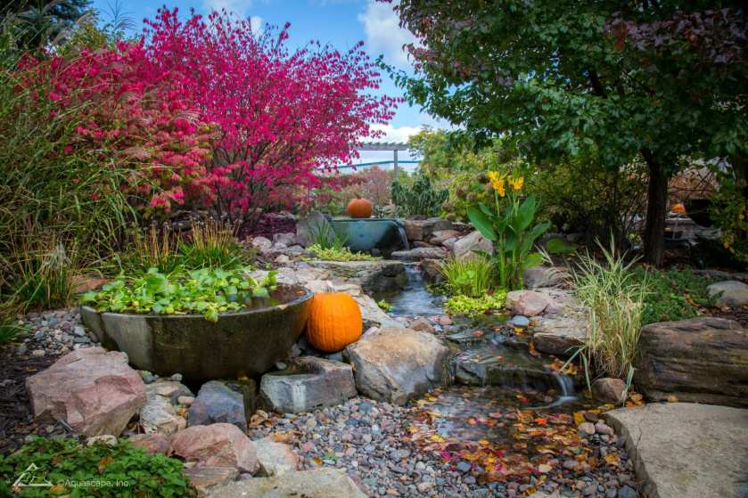 backyard water features design
