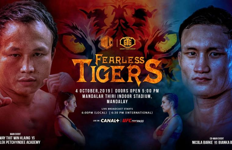 WLC: Fearless Tigers Preview
