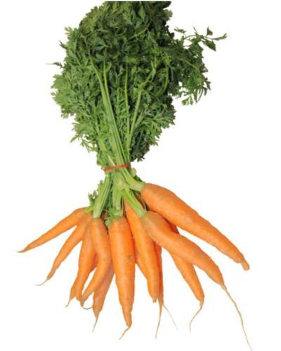Carrot-Gajar