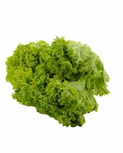 Lettuce-Green